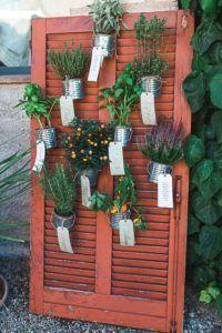 Un esempio di Tableau de mariage con le erbe aromatiche